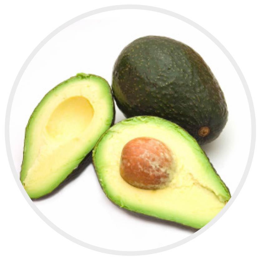 avocado_milk shake Haarpflege