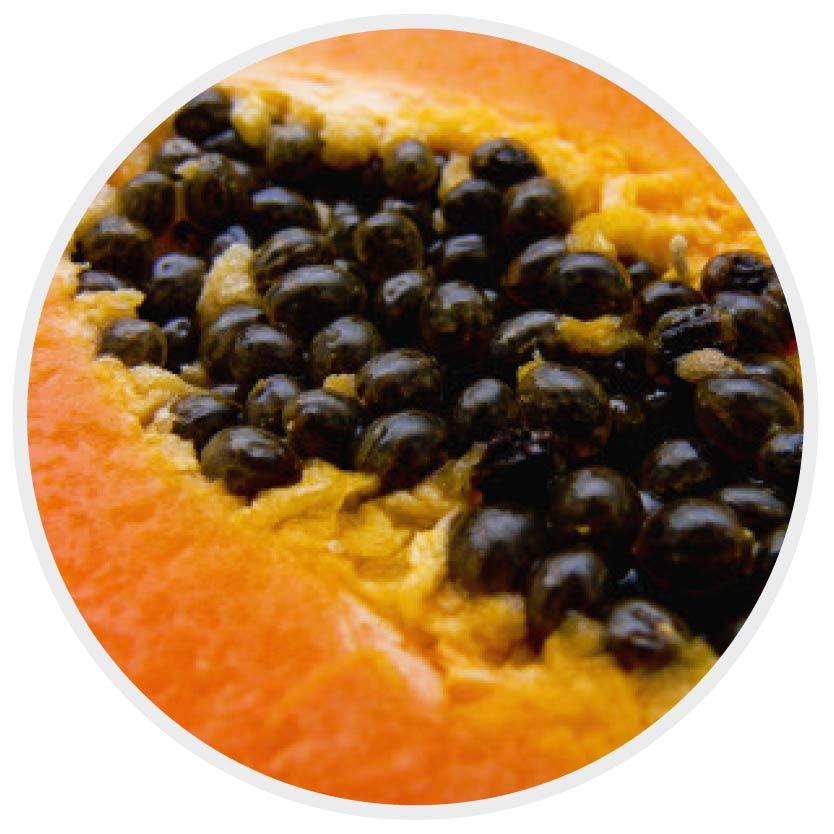 papaya_milk_shake natürliche haarpflege